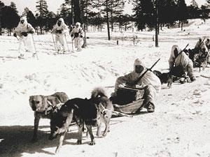 Доставка боеприпасов на собаках. Карелия